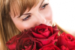 Say I love you with beautiful roses from Canada Floral Delivery
