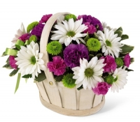 Basket flowers with daisies button poms and more